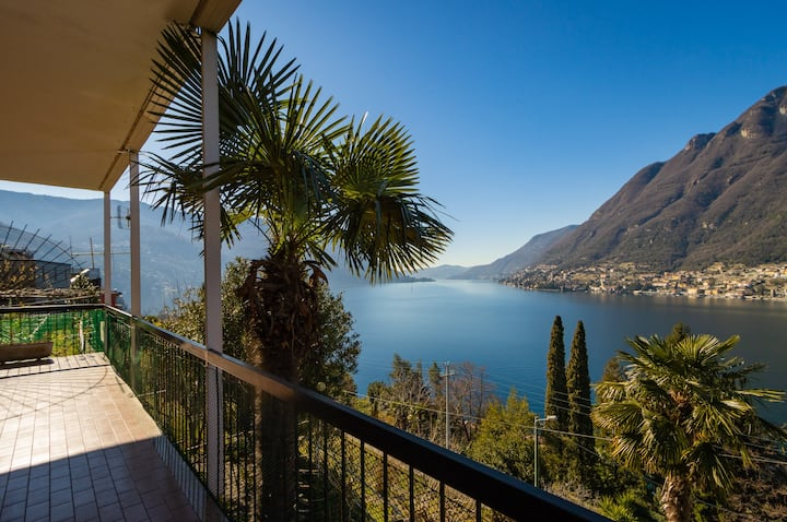 The Palm Stunning View On Lake Como 6 Pax Apartments For Rent In Pognana Lario Lombardia Italy