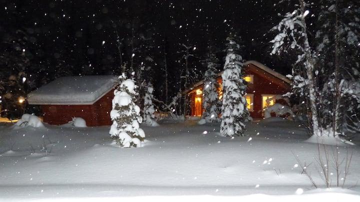 Cozy, quiet Cottage in Pallas-Ylläs-National park