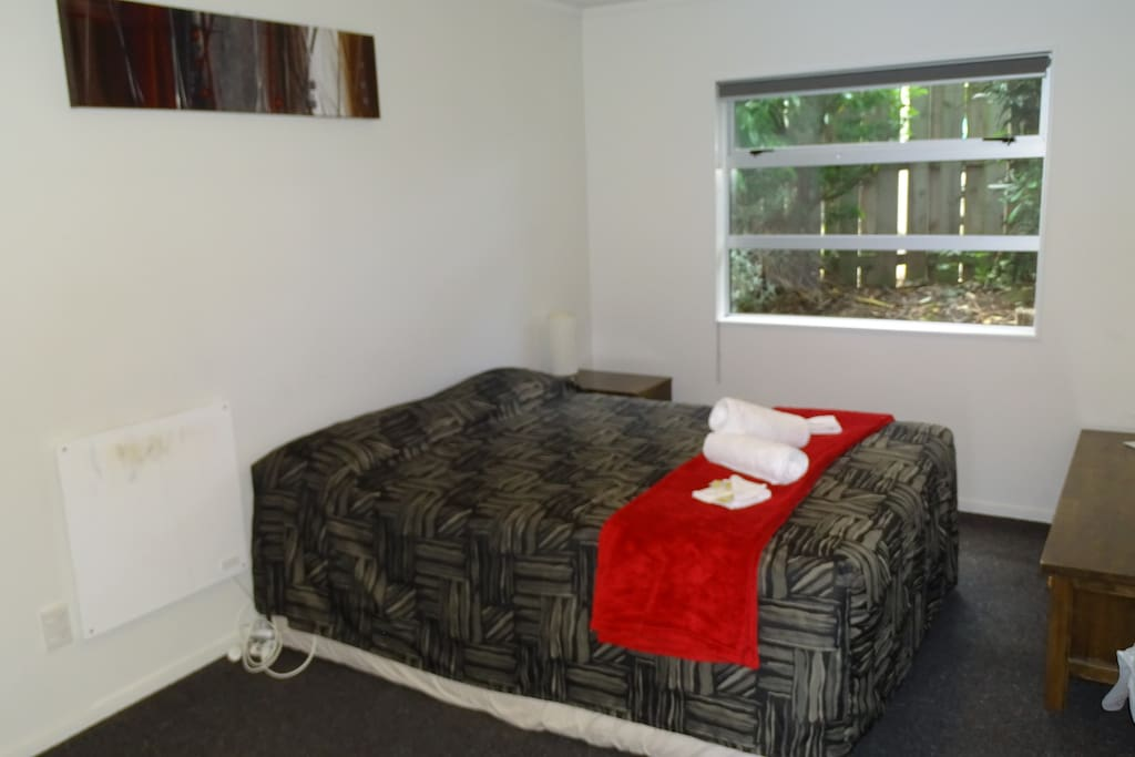 Room with Queen Bed, TV and shared bathroom