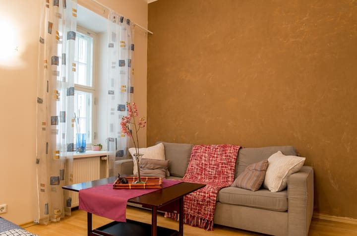 Big homely apartment in old town