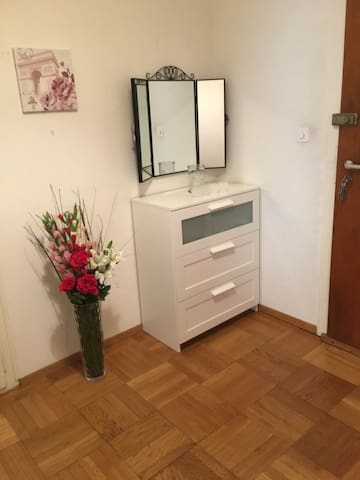 Cosy aprt near the airport & ONU - Genebra - Apartamento