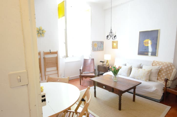 Nice apartments in Aups, the heart of Provence