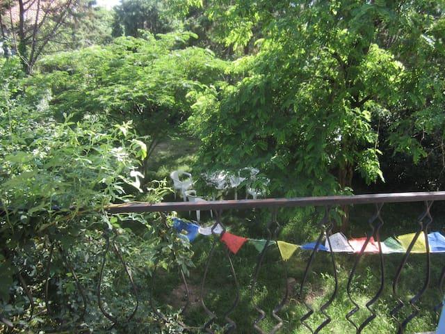 Maison privative et son jardin ombragé.