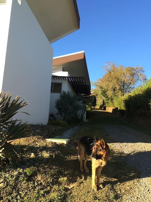 La entrada principal de la casa