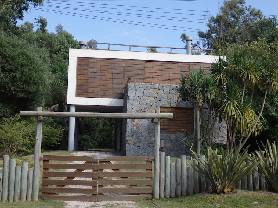 the house seen from the front lots of plants. a very modern design