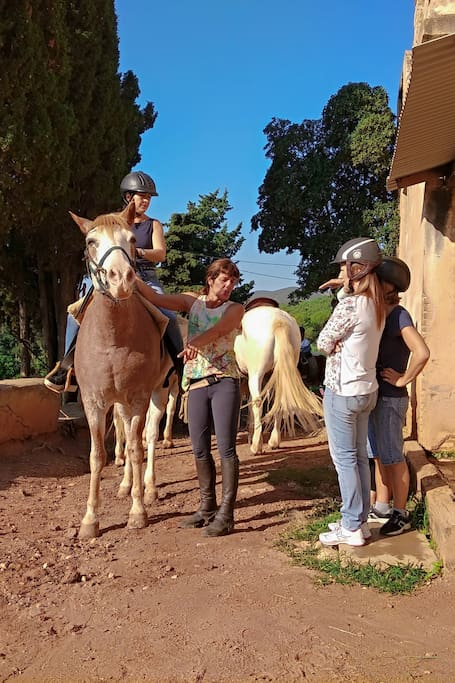 """Marta showing how to """"handle"""" the horse."""