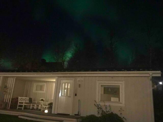 The Arctic Apartment
