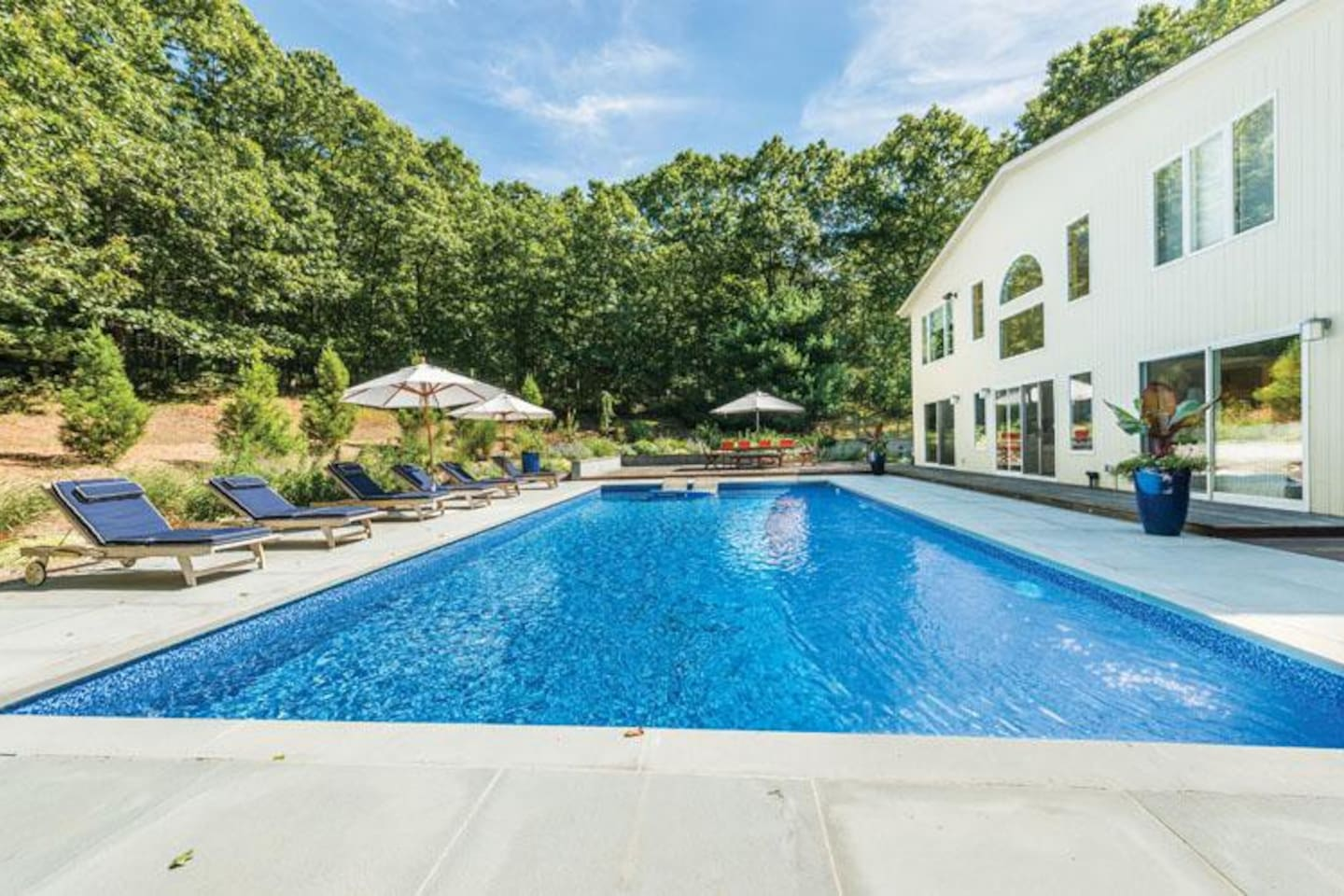 Backyard with salt water pool deck and lounge chairs
