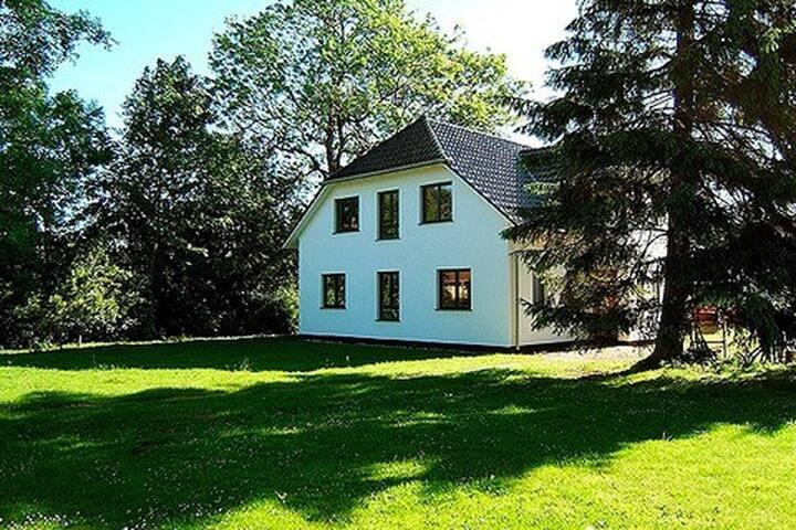 Hütigendachs, FW 4 - Zingst - Huis