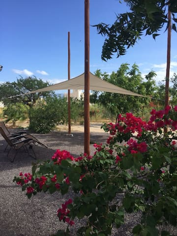 Casa Remolque. AC, your own private lot