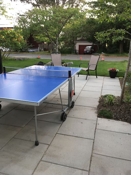 Garden patio and outdoor ping pong!