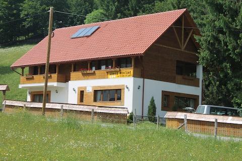 Casa Arnica Montana Arieseni