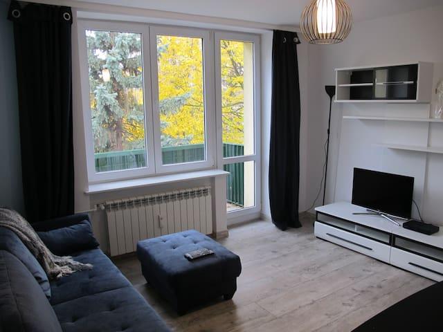 Modern apartment near Chopin Airport - Warszawa - Pis