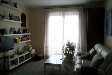 Piso d dos dormitorios con parking - Donostia