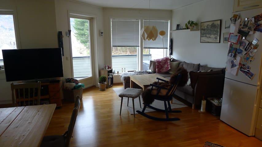 Koselig og velstelt leilighet/Cosy apartment - Stedje - Departamento