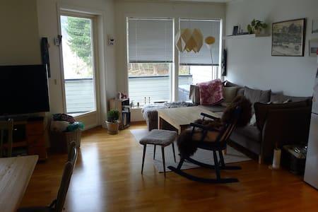Koselig og velstelt leilighet/Cosy apartment - Stedje - 公寓