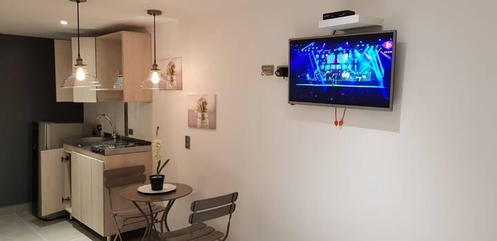 pequeño sen Loft moderno bien decorado ubicado