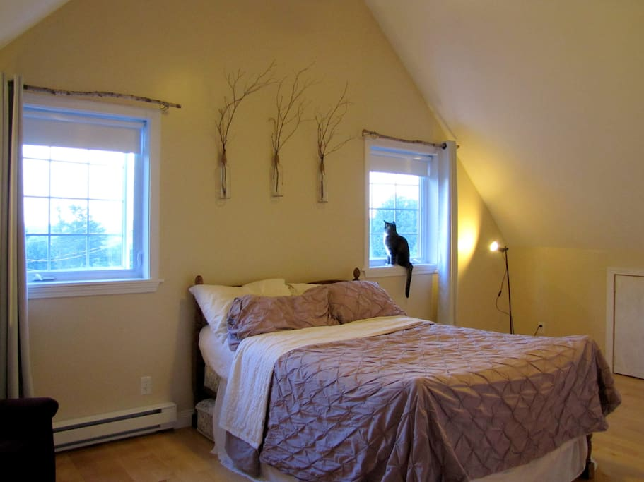 The Guest Room!