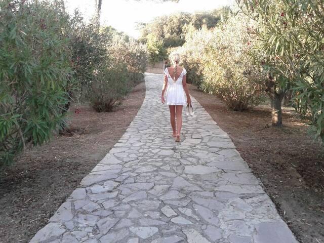 piano terra in Villa bifamiliare 50m da 2 spiagge - Portoferraio - Villa