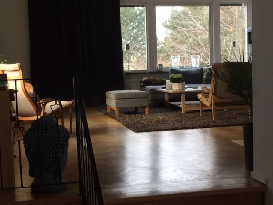 Living area for social life