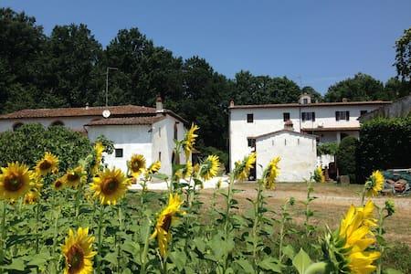 """Vacation home in Tuscany """"Padula"""" - calcinaia - 公寓"""