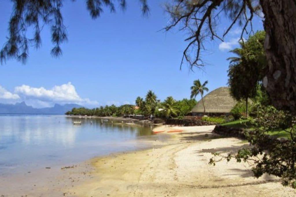 plage de sable blanc à 50 mètres de la maison