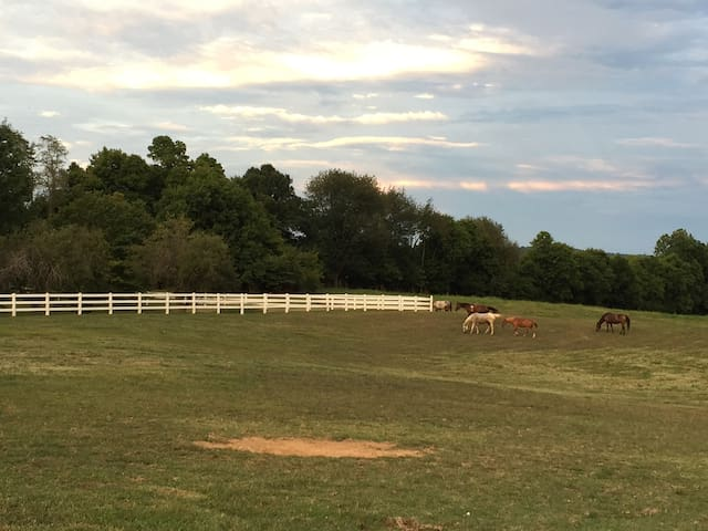 Glamping in the city - Princeton, Kentucky
