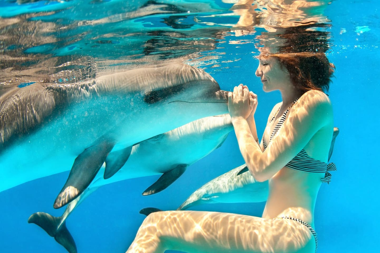 YES!  You can swin with the dolphins in local dolphin parks.