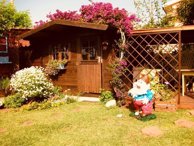 Cottage's entrance through the garden