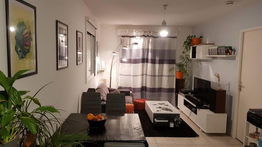 Appartement T2 cozy et fonctionnel