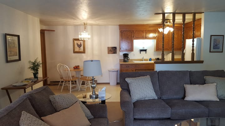 HUGE CONDO!  Walk to Lambeau!  Private Garage!