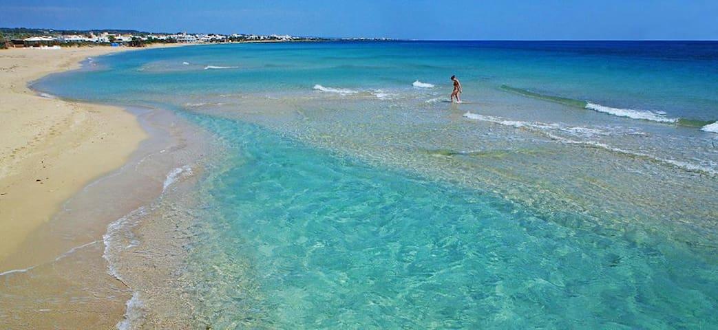 Spiagge sabbiose