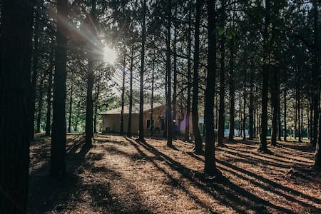 Whispering Pines Cabins & Outfitting-Pine Tree