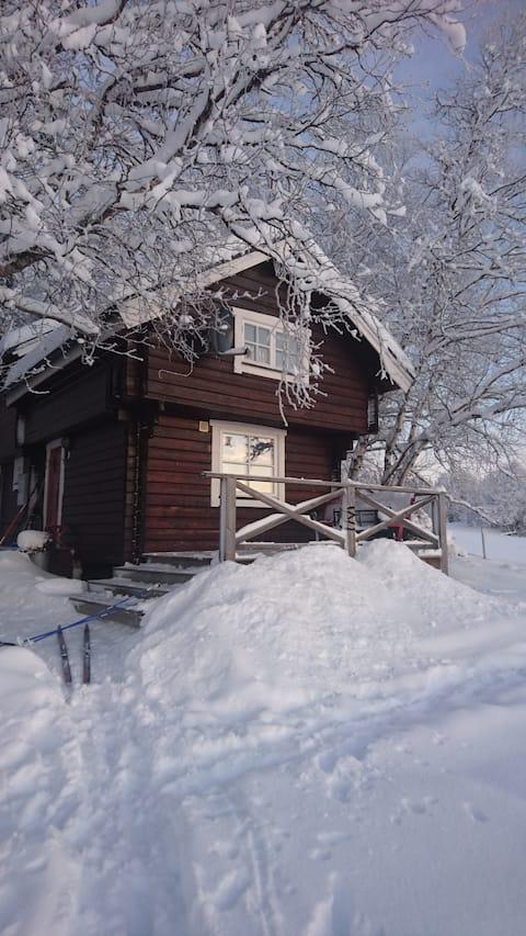 Mysig stuga  / Cosy cottage on a huskyfarm