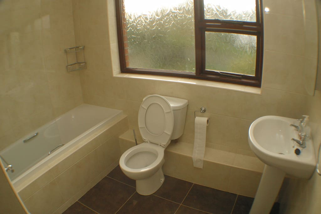 main bathroom with electric shower