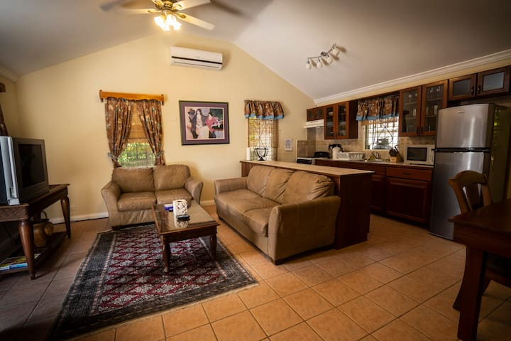 Living room, dining and kitchen area