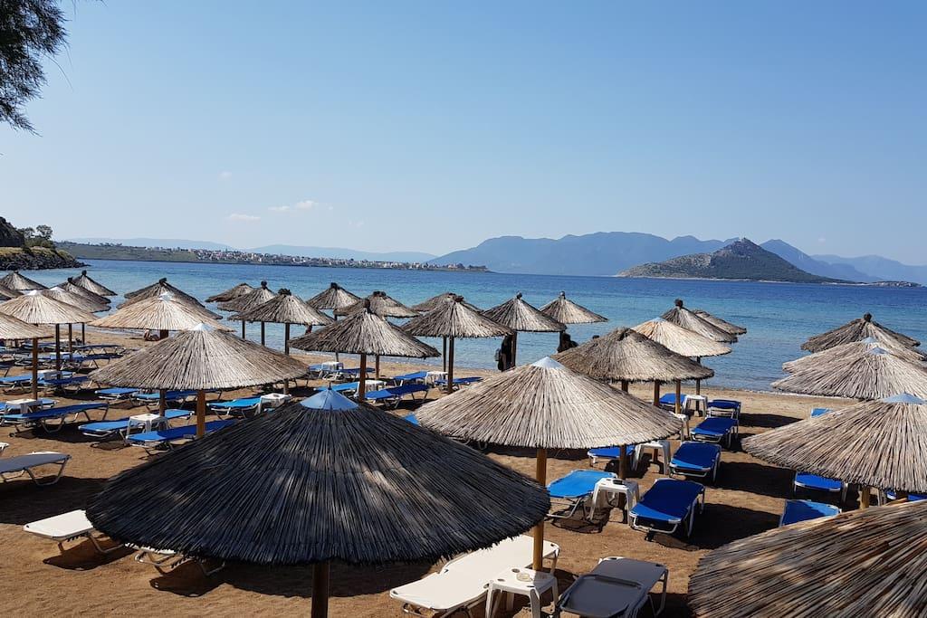 Β' παραλία Μαραθώνα, 1000 μέτρα από το σπίτι!
