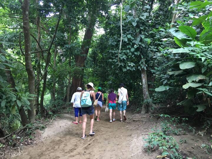 Caminando x el bosque