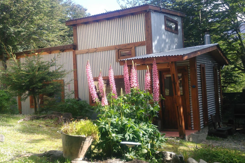 Verano en la cabaña con sus lupinos en flor.