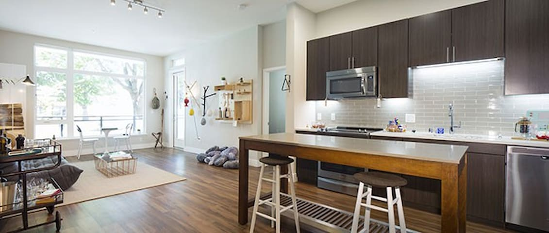 Brand new Downtown Loft in Downtown Mountain View