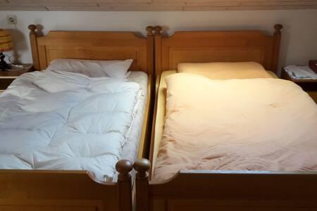 Zimmer für Abenteurer, Musiker und Entspanner - Wangen im Allgäu