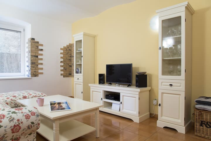 Naturally cold apartment in the old town - Bratislava - Appartement