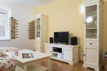 Naturally cold apartment in the old town - Bratislava - Apartment