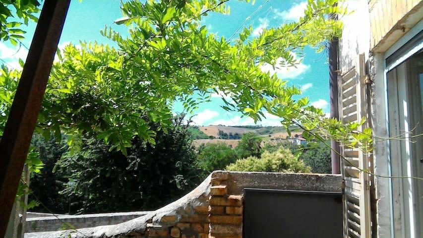 Il Giardino di Zia Ines 5/6 persone - Offida - House