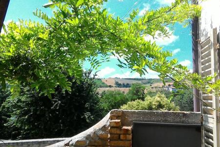 Il Giardino di Zia Ines 5/6 persone - Offida