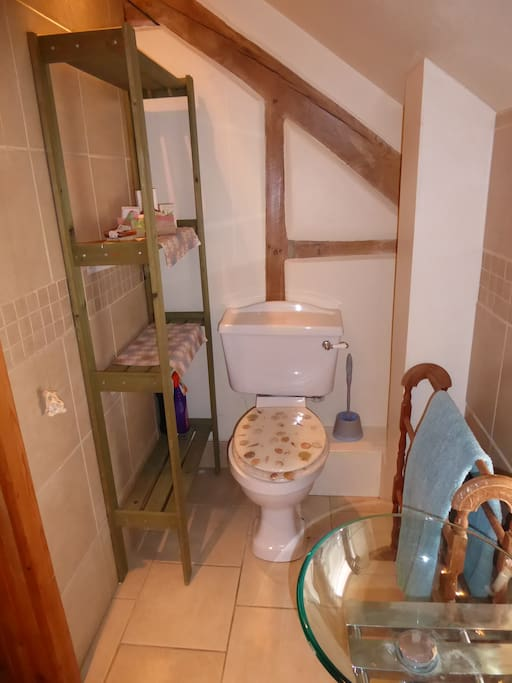 Wet Room and WC