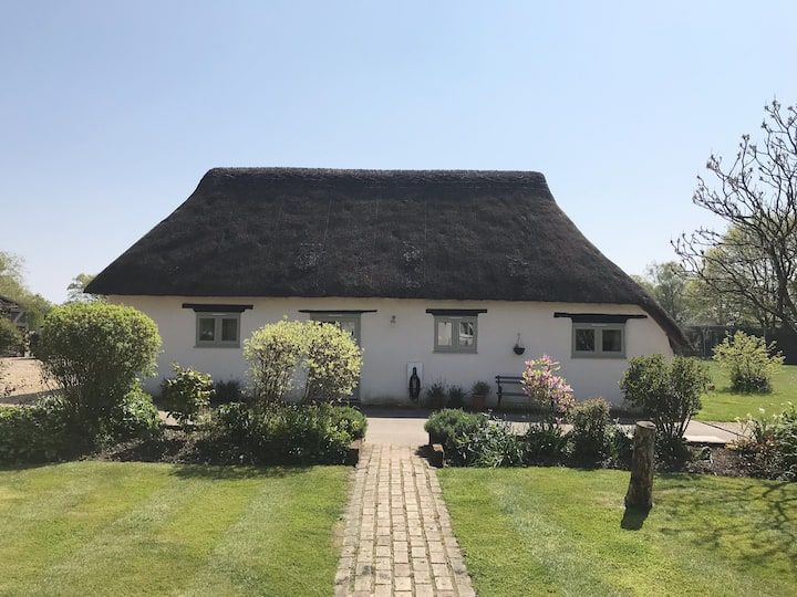 Pretty detached cottage in beautiful New Forest