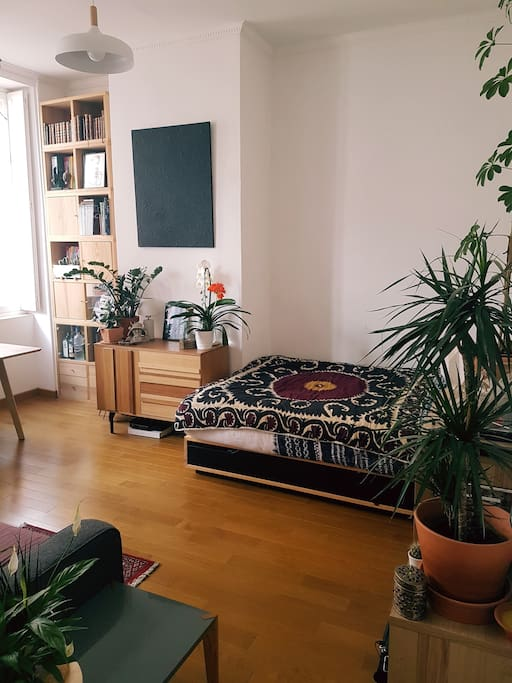 Chambre/ Salon