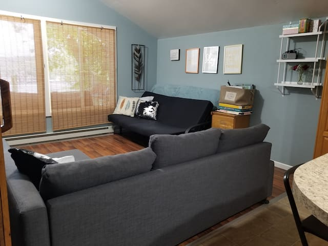 Living room : gorgeous lake view, fold out couch, futon
