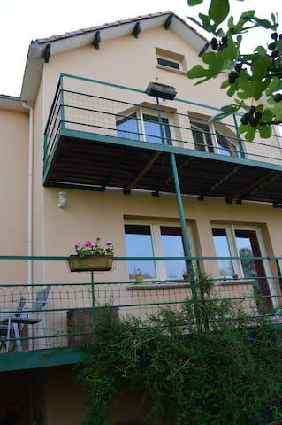 Maison sur pilotis, grande terrasse - Sainte-Luce-sur-Loire - House